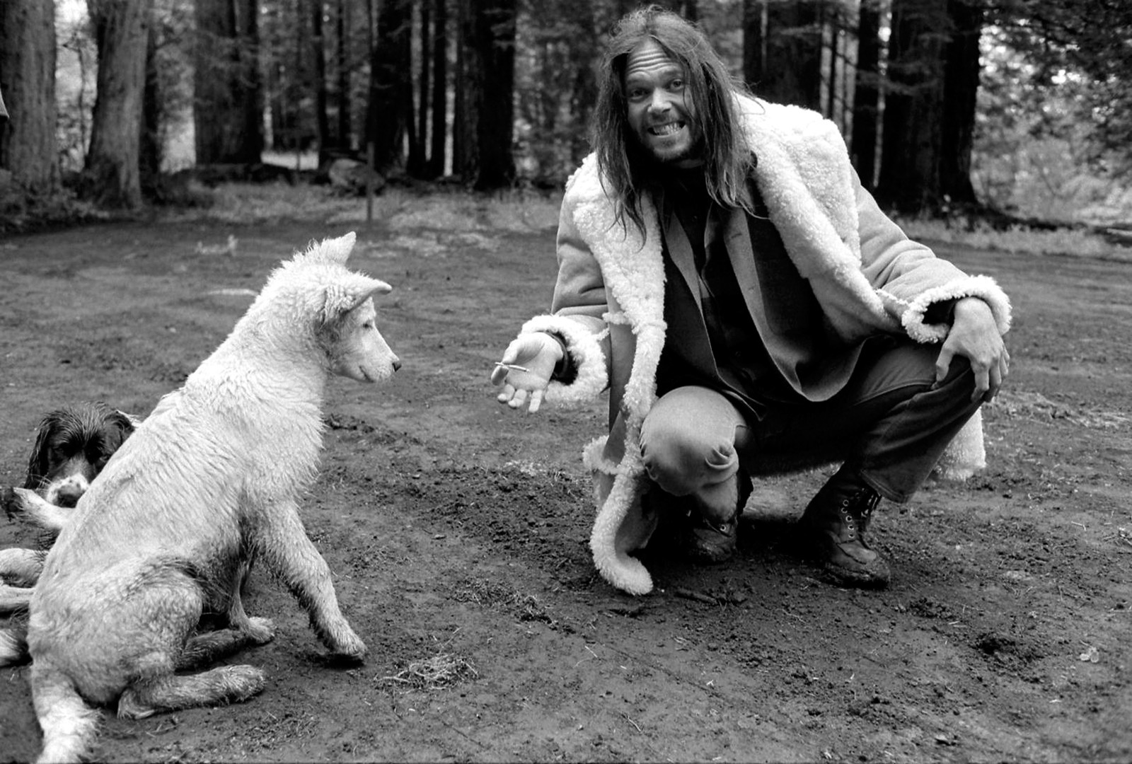 Neil-Young, 1971,foto Henry Diltz
